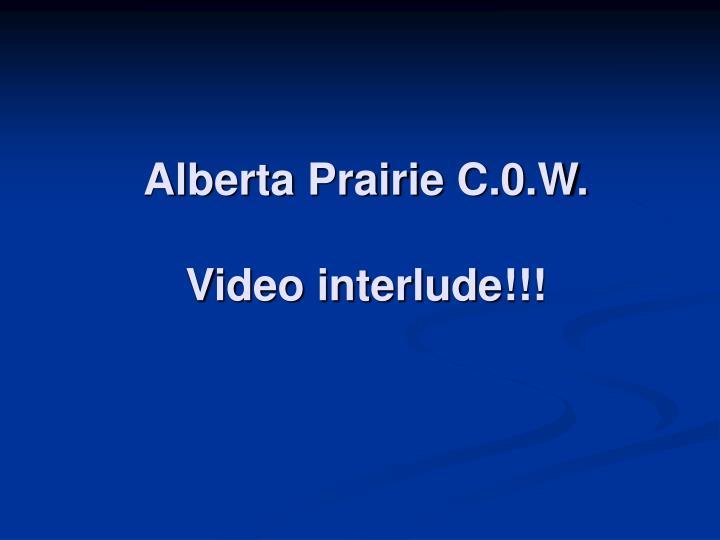 Alberta Prairie C.0.W.