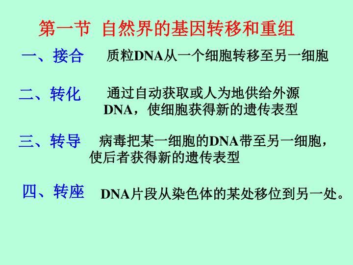 第一节  自然界的基因转移和重组