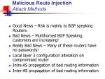 malicious route injection attack methods