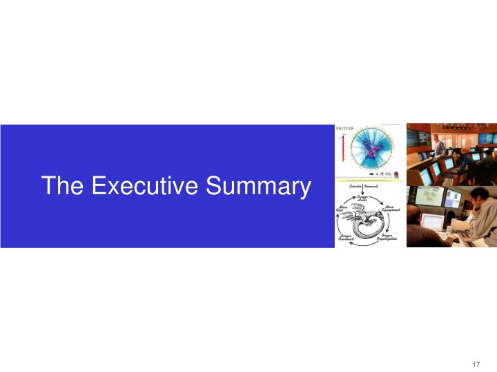 The Executive Summary