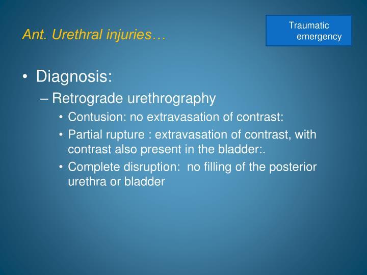 Ant. Urethral injuries…