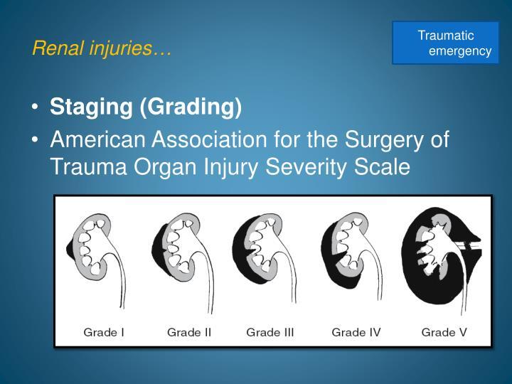 Renal injuries…