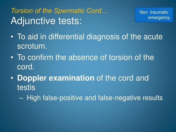 Torsion of the Spermatic Cord…