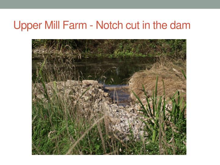Upper Mill Farm - Notch cut in the dam