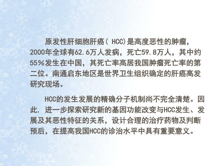 原发性肝细胞肝癌(
