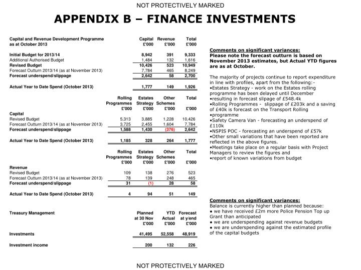APPENDIX B – FINANCE INVESTMENTS