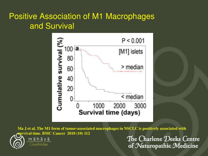 Positive Association of M1 Macrophages