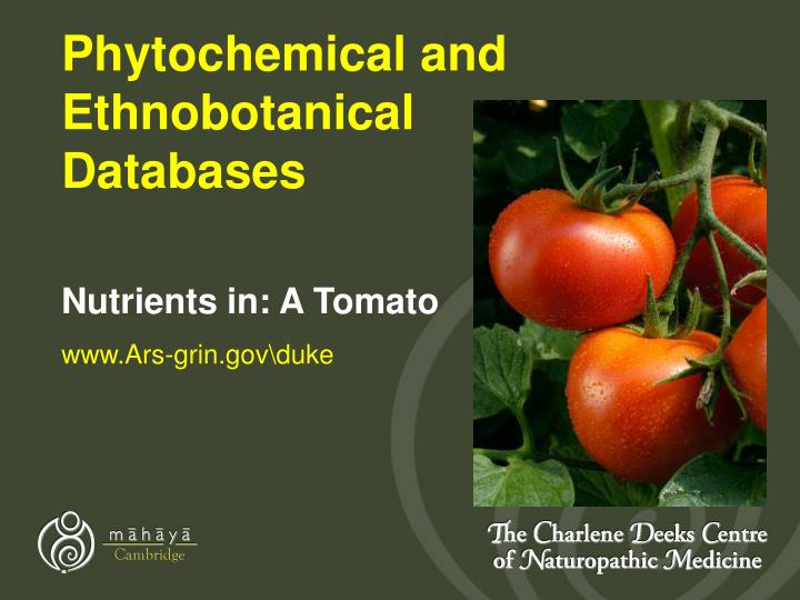 Phytochemical and Ethnobotanical Databases