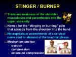 stinger burner