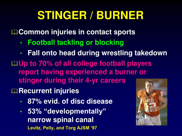 STINGER / BURNER