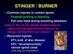stinger burner1