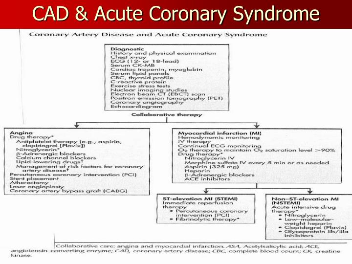 nursing managent of acute coronary syndrome patient The acute coronary syndromes algorithm outlines the steps for assessment and management of a patient with acs the algorithm begins with the assessment of chest pain and whether it is indicative of ischemia.