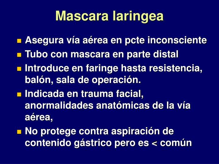 Mascara laringea