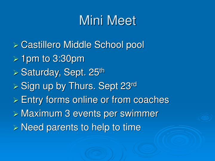 Mini Meet