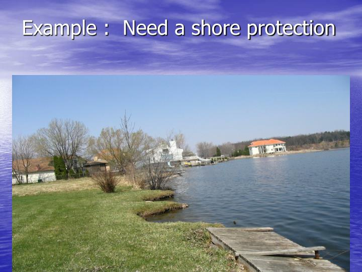 Example :  Need a shore protection