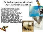 de la descoperirea structurii adn la ingineria genetic