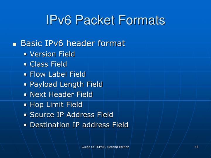 IPv6 Packet Formats