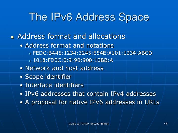 The IPv6 Address Space