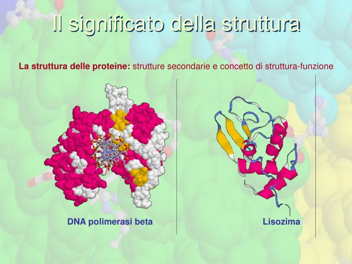Il significato della struttura