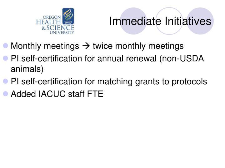Immediate Initiatives