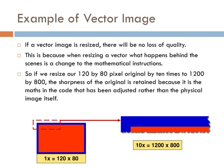 Example of Vector Image