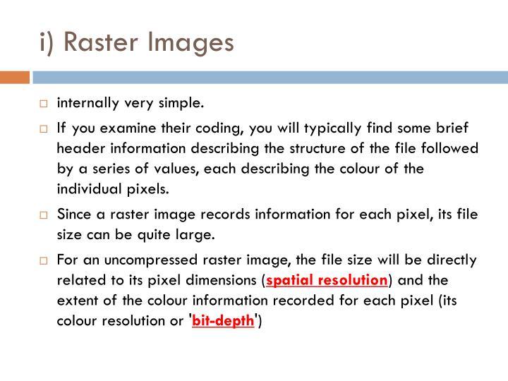 i) Raster Images