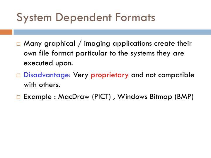System Dependent Formats