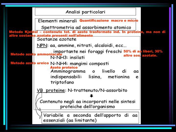 Quantificazione  macro e micro
