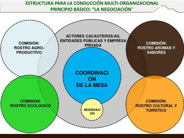 ESTRUCTURA PARA LA CONDUCCIÓN MULTI-ORGANIZACIONAL