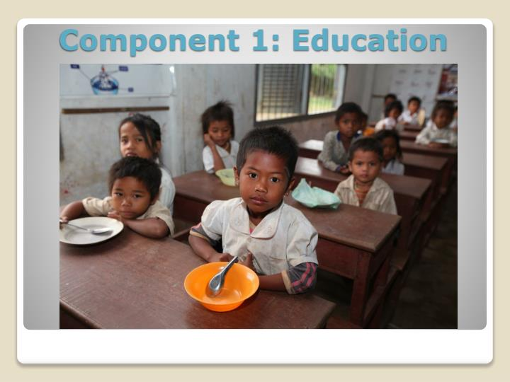 Component 1: Education
