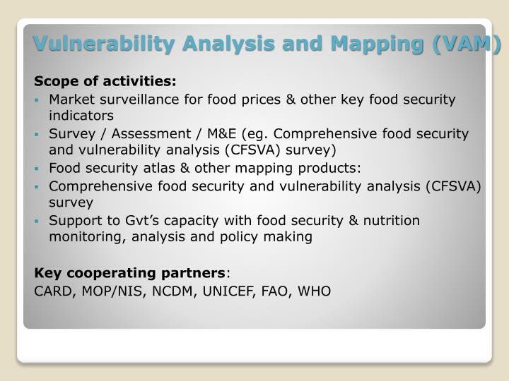 Vulnerability Analysis and Mapping (VAM)