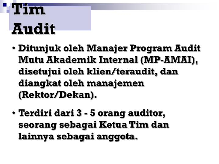 Tim Audit