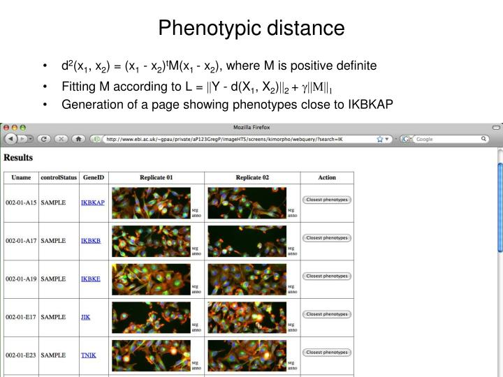 Phenotypic distance