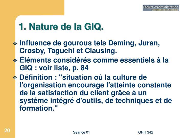 1. Nature de la GIQ.
