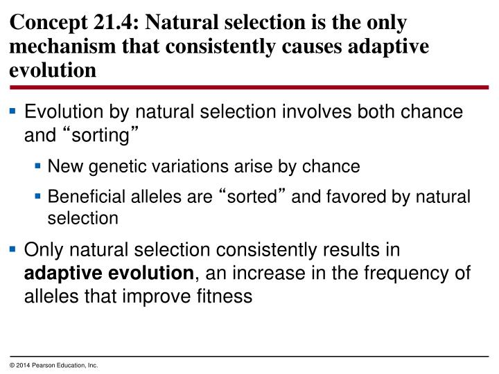 Evolution by natural selection involves both chance and