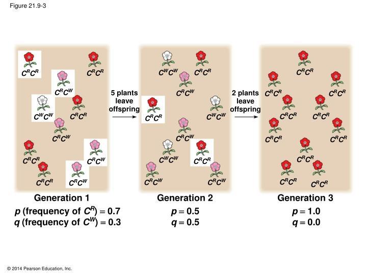 Figure 21.9-3