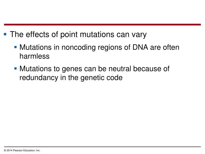 The effects of point mutations can vary