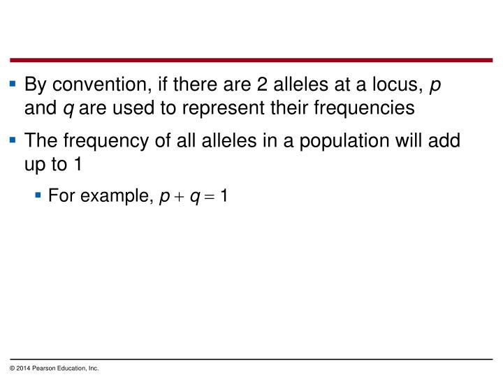 By convention, if there are 2 alleles at a locus,