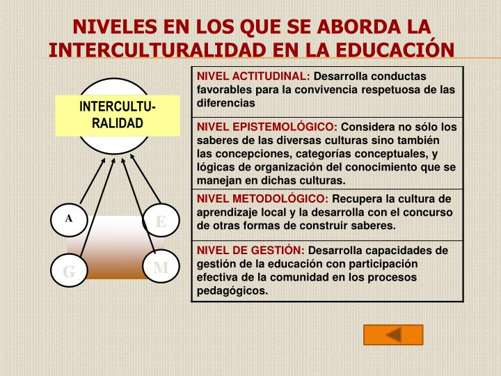 NIVELES EN LOS QUE SE ABORDA LA INTERCULTURALIDAD EN LA EDUCACIÓN