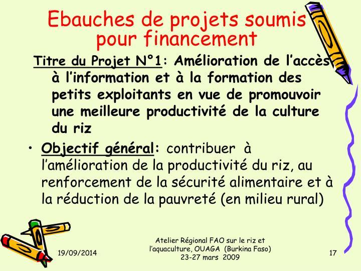 Ebauches de projets soumis pour financement
