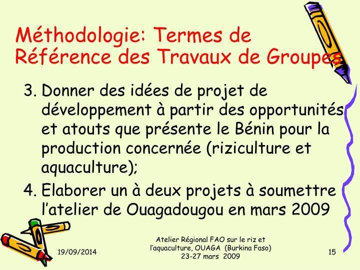 Méthodologie: Termes de Référence des Travaux de Groupes