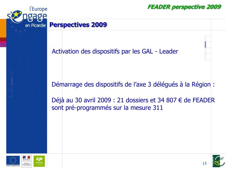 FEADER perspective 2009