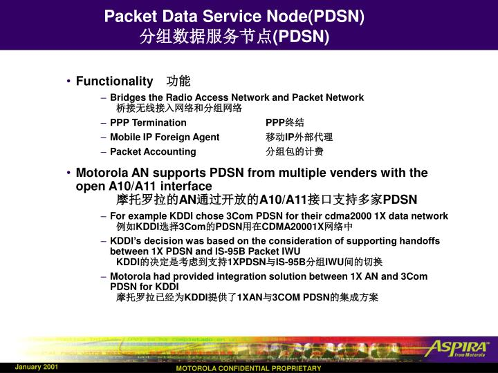 Packet Data Service Node(PDSN)
