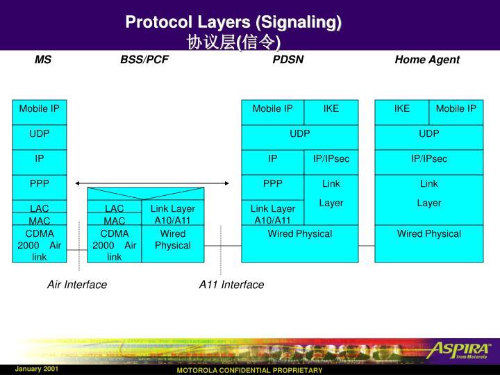 Protocol Layers (Signaling)