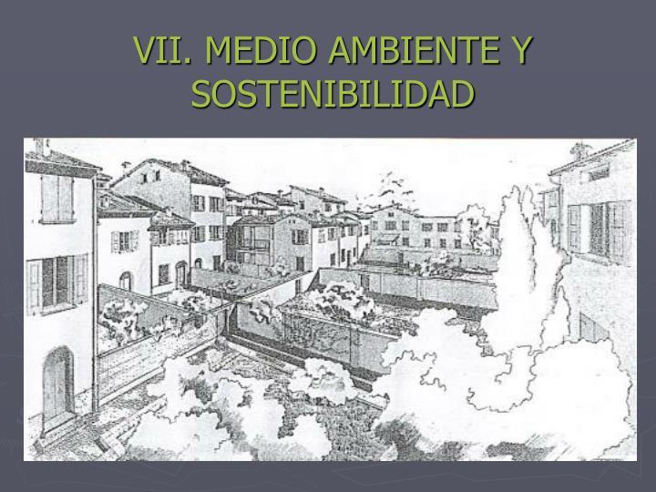 VII. MEDIO AMBIENTE Y   SOSTENIBILIDAD