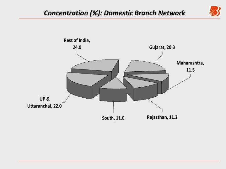 Concentration (%): Domestic Branch Network