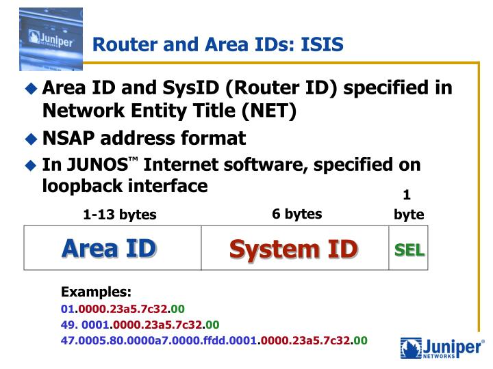 Router and Area IDs: ISIS