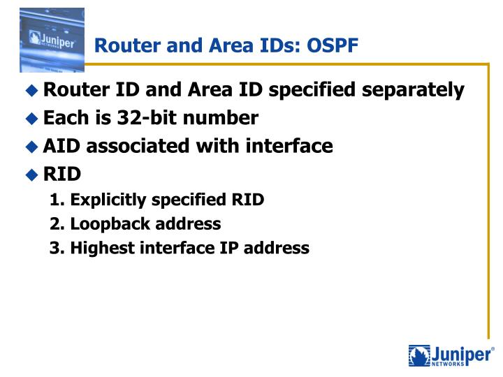 Router and Area IDs: OSPF