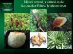 m ned seened ja taimed mida kasutatakse fohow loodustoodetes