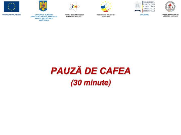 PAUZĂ DE CAFEA